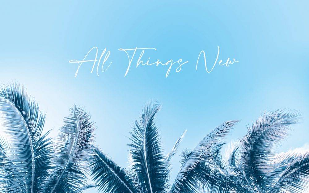 All Things New - Pastor Petter Klar - Tweed Coast Church